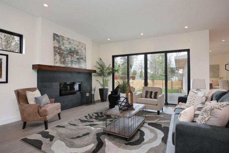 st.paul-luxury-living-room-interior-design