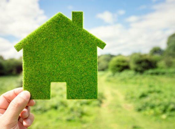 Green Eco House Design